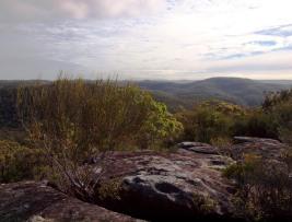 Landscape at TR