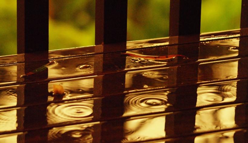 Sunset rain Sydney