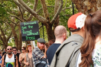 Forest for the trees #marchinmarch