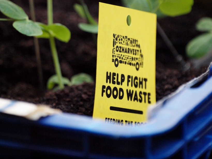 OzHarvest, Fighting food waste.