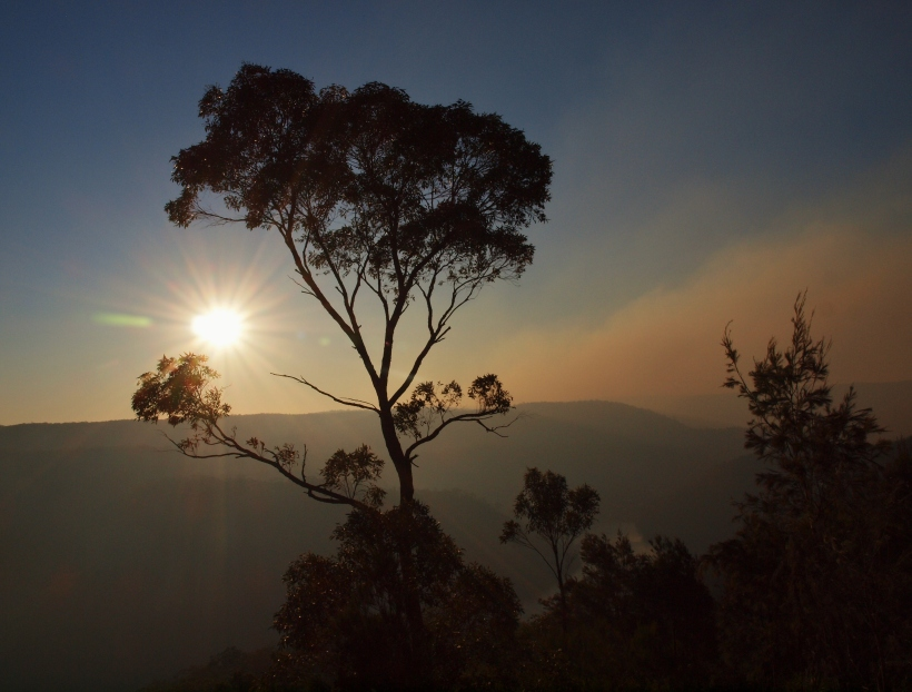 Sunset after a Hazard Reduction, Australia