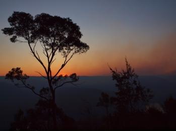 Sunset after a Hazard Reduction, Australia
