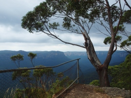 Perry's Lookdown Blue Mountains