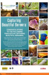Capture Beautiful Berowra Finalists