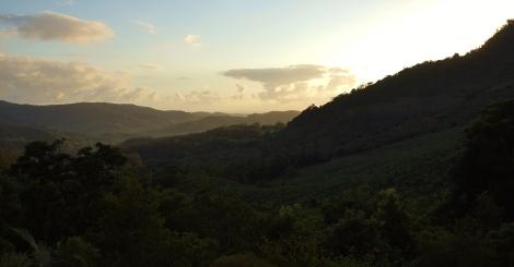 Toolond Plantation Sunset