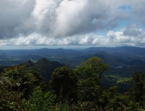 View from Mt Warning