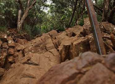 Summit Climb Mt Warning