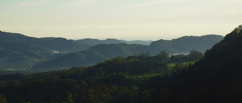 View from Toolond Plantation