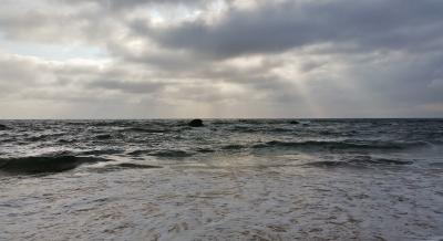 Port Macquarie Nature Photography coastal walk