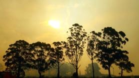 Masonite Road Fire Tomago Port Stephens Newcastle