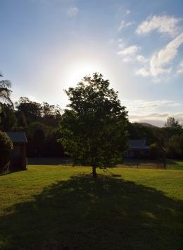 Port Macquarie Nature Photography