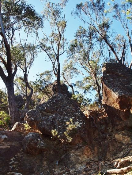 Mount Solitary Hiking Nature Photography Australia