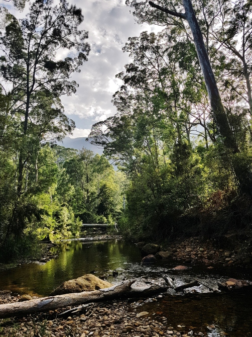 Perrys Lookdown Blue Mountains March 2018 (11)