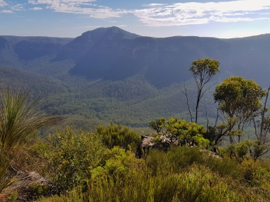Perrys Lookdown Blue Mountains March 2018 (19)