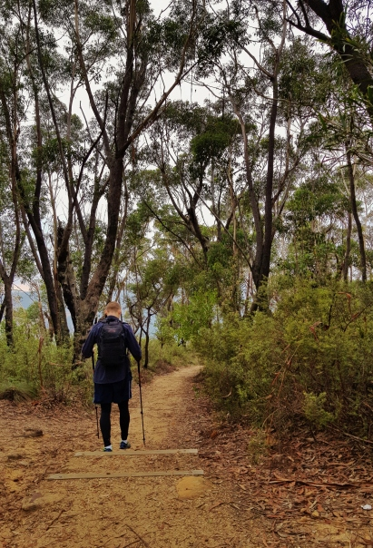 Perrys Lookdown Blue Mountains March 2018 (2)