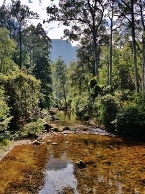 Perrys Lookdown Blue Mountains March 2018 (29)