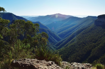 Kanangra Walls and Blue Mountains (168)