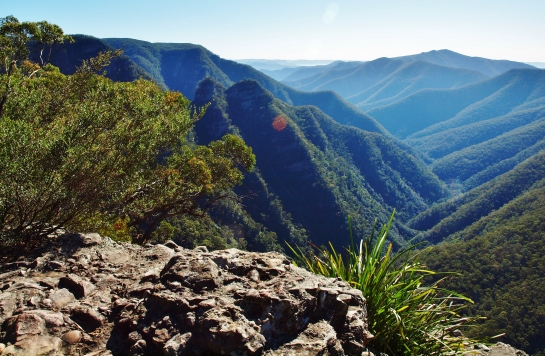 Kanangra Walls and Blue Mountains (208)