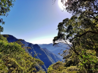 Kanangra Walls and Blue Mountains (38)