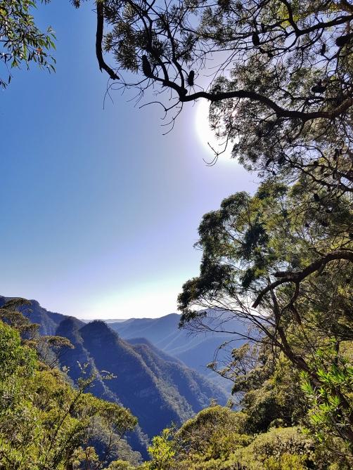 Kanangra Walls and Blue Mountains (41)