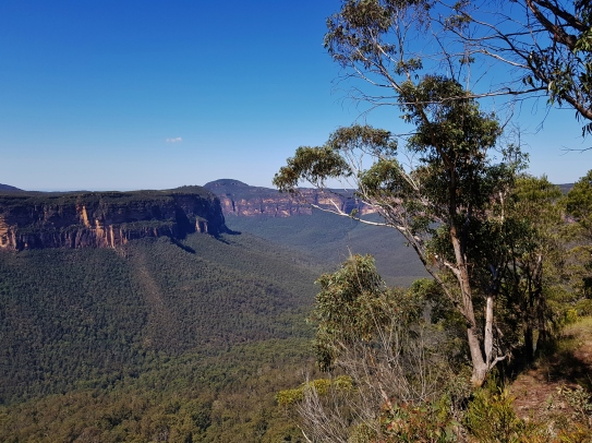 Kanangra Walls and Blue Mountains (92)