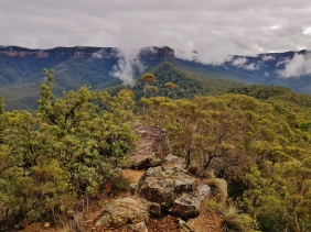 Mt Solitary Blue Mountains (17)