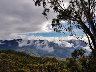 Mt Solitary Blue Mountains (25)