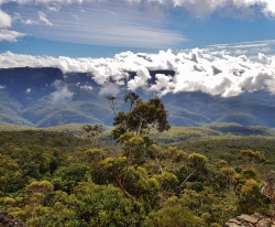 Mt Solitary Blue Mountains (30)