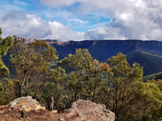 Mt Solitary Blue Mountains (39)