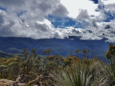 Mt Solitary Blue Mountains (40)