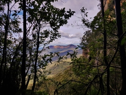 Mt Solitary Blue Mountains (76)