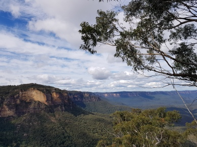 Mt Solitary Blue Mountains (89)