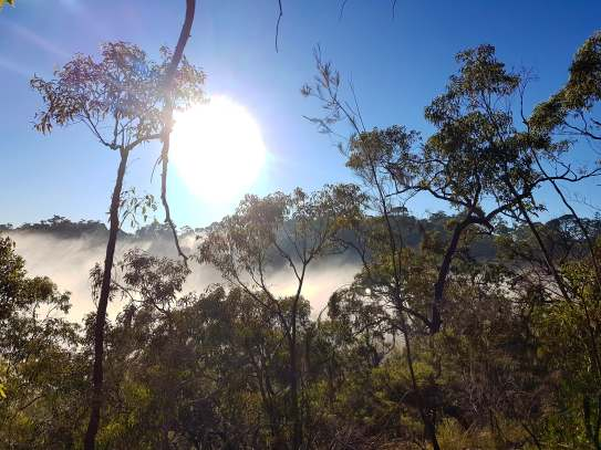 Cowan to Berowra Waters Freeman's Fitness hike (13)