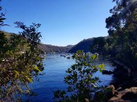 Cowan to Berowra Waters Freeman's Fitness hike (2)