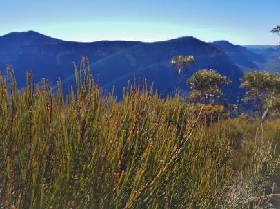 Perrys to Du Faur Head Hike (127)
