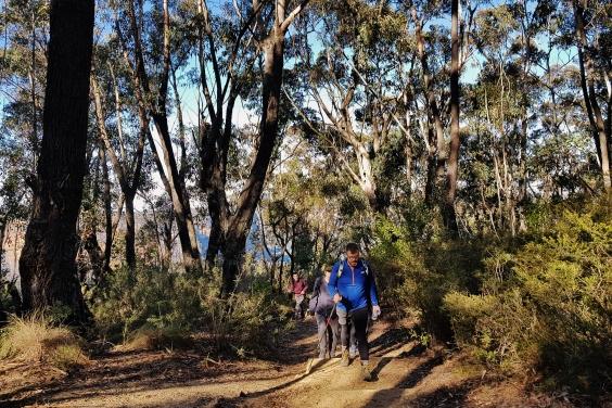 Perrys to Du Faur Head Hike (160)