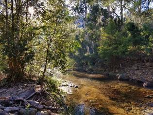Perrys to Du Faur Head Hike (54)