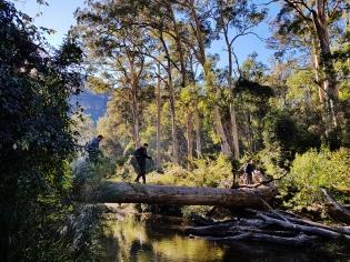 Perrys to Du Faur Head Hike (56)