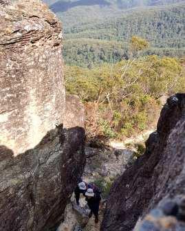 Mt Solitary Katoomba Nature Photography