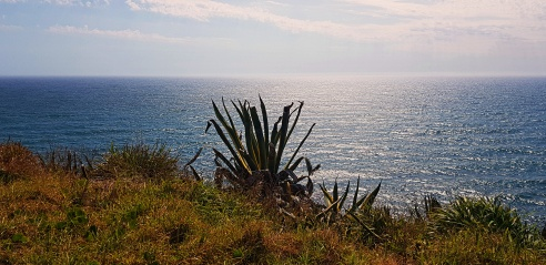 port macquarie 30